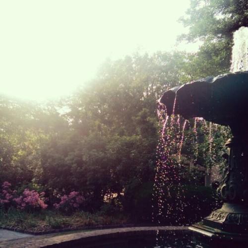 A Charleston pocket park.